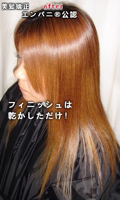 美髪専門店のノートリ・脱トリ革命!真実の艶髪は結合強化