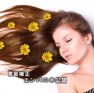 美髪技術について花王さんが言っている事