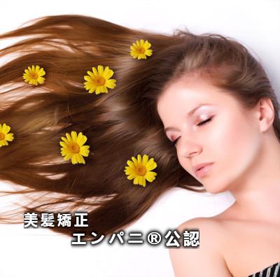 美髪技術とは美髪矯正の技術力である